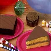 Calorie Control Chocolate Icing Mix